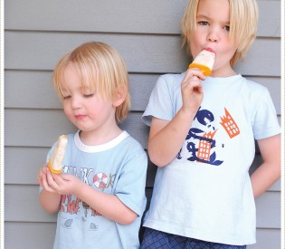 This week's Summer Fun Treat: Apricot Rice Pudding Pops